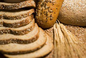 Dietary Fiber may help to enhance longevity